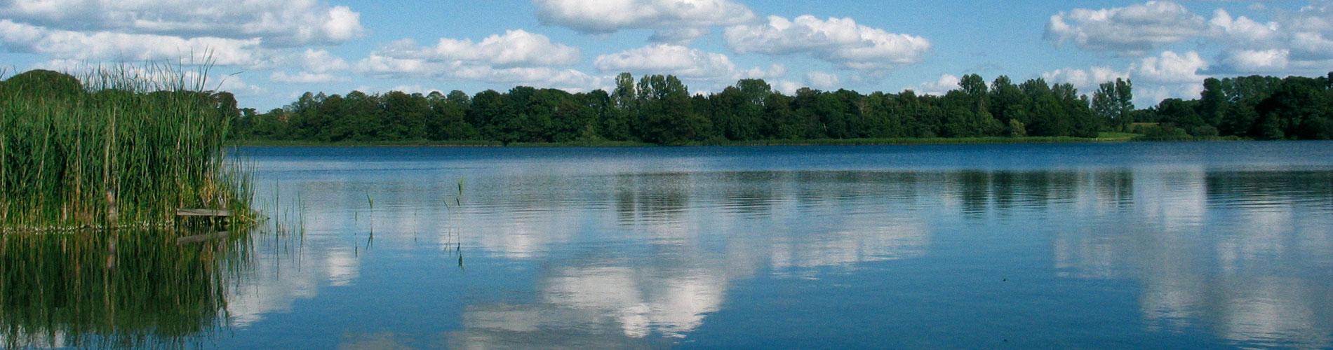 Gewässer - Landesverband der Wasser- und Bodenverbände
