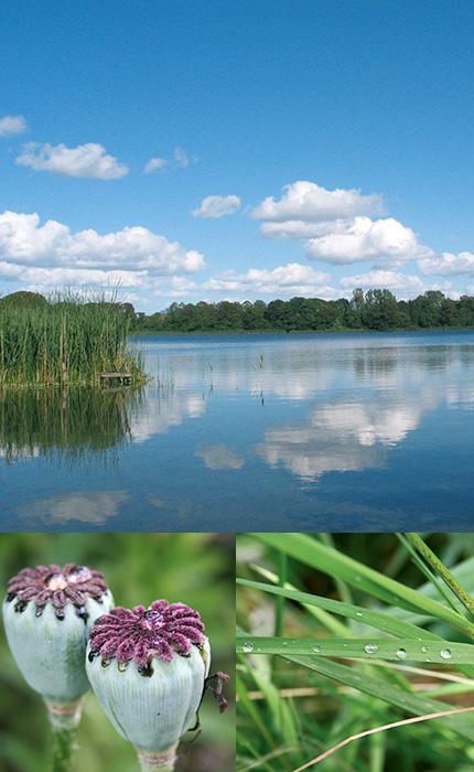Aufgaben des Landesverbands - Landesverband der Wasser- und Bodenverbände